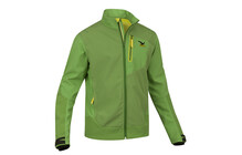 Salewa Vishnu SW Mix Men's Jacket eucalyp